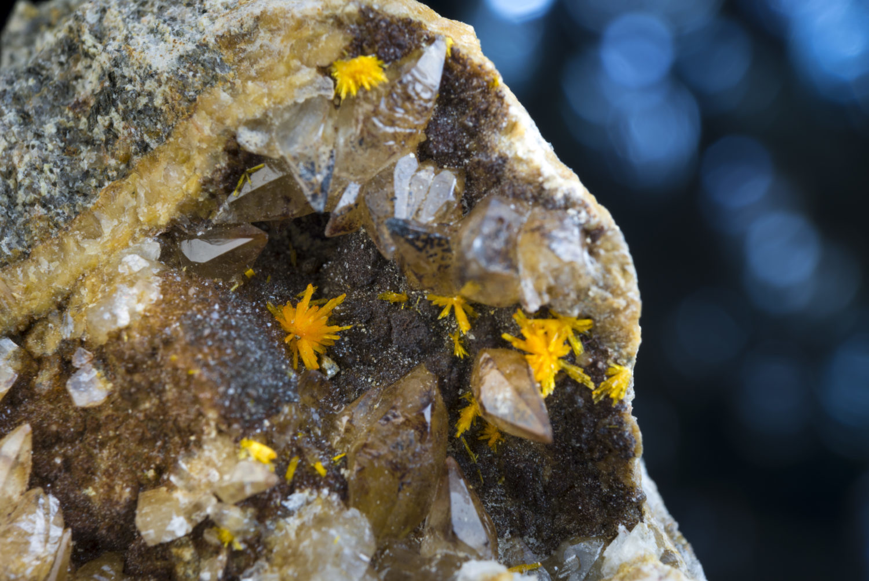 ボルトウッド石〈ナミビア産〉2