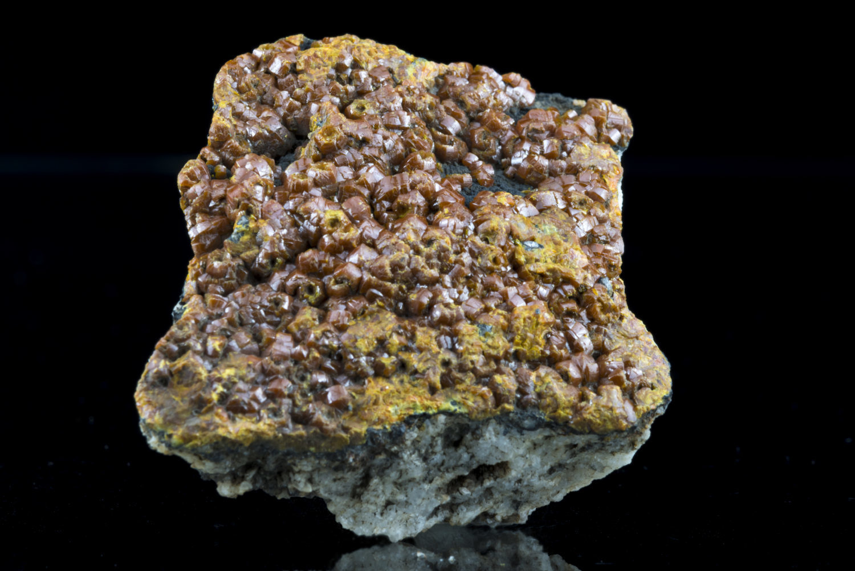 カンピ石〈イギリス産〉−1